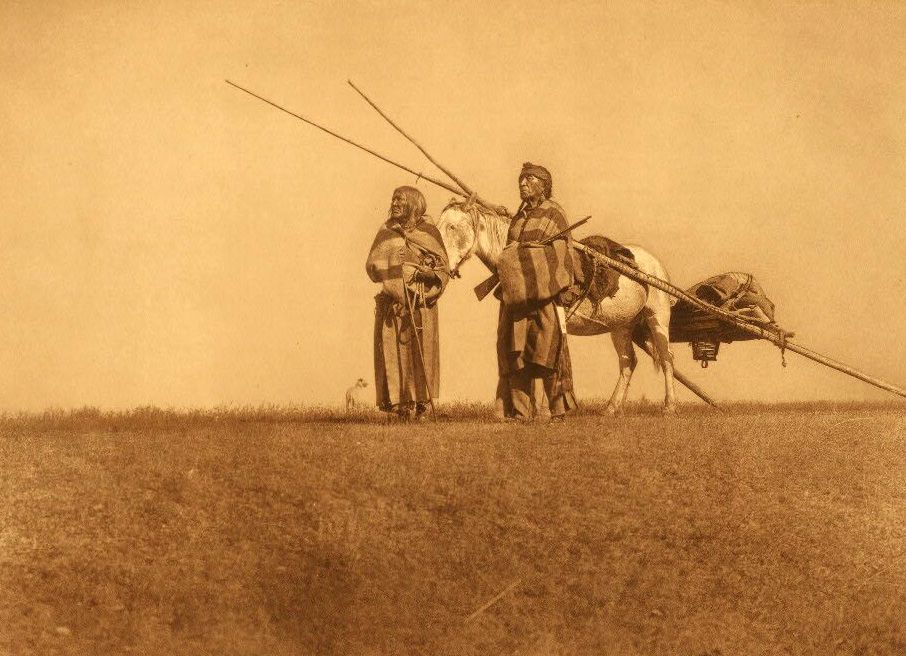 American Indians : A Blackfoot Travois.
