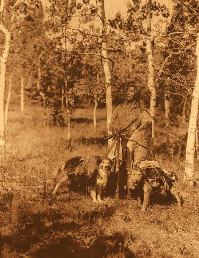 American Indians : Assiniboin Hunter.