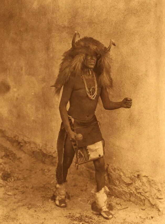 American Indians : Sia Buffalo Dancer.