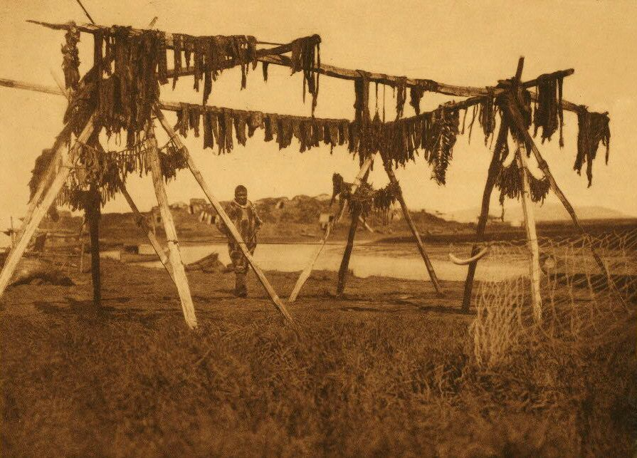 A Photograph of Drying Whale Meat [Hooper Bay].