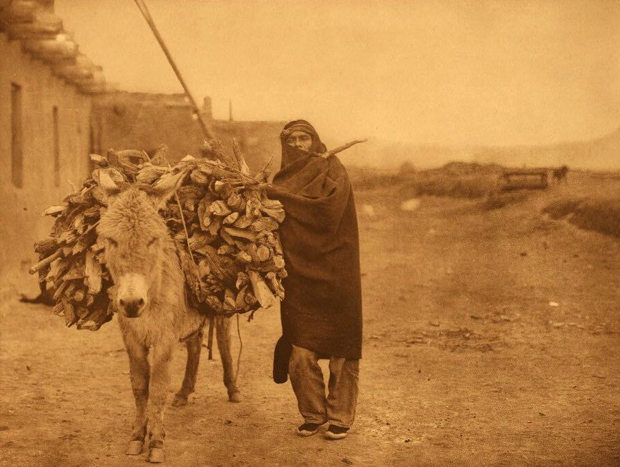 A Photograph of a Zuni Indian with a Load of Fuel.