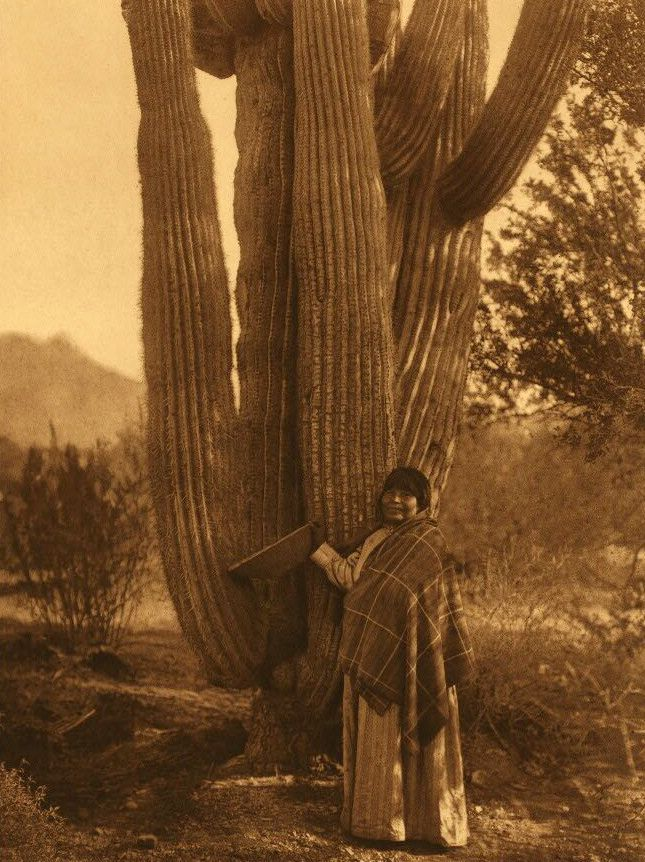 A Photograph of A Pima Woman.
