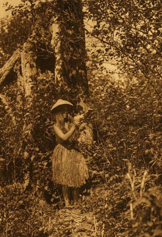 A Photograph a Quinault Berry Picker.