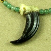 Alaskan Wolf Claw with Aventurine Beads Necklace.