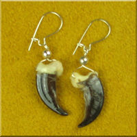 Alaskan Wolf Claw Earrings with Sterling Silver.