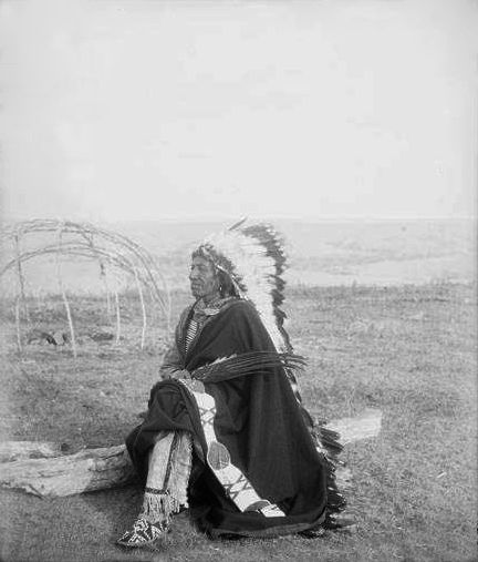 A Brule Indian Man Sitting on a Log in a Grassy Field.