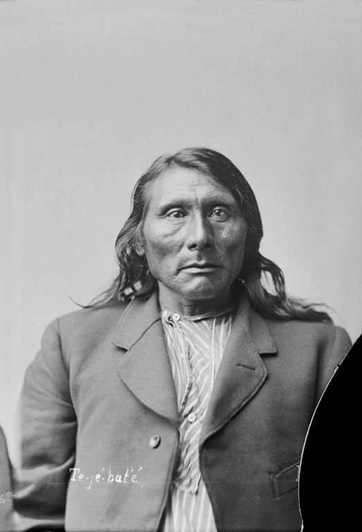An old photograph of Buffalo Chips aka War Leader - Ponca 1882.