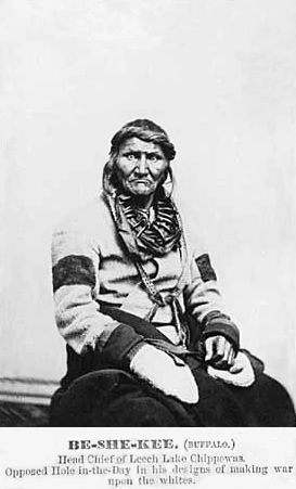 An old photograph of Buffalo aka Be-she-kee aka Pezeke aka Bizhiki - Chippewa Chief.