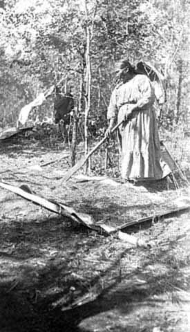 An old photograph of a Native American Drying Wild Rice on Sheets of Birch Bark.
