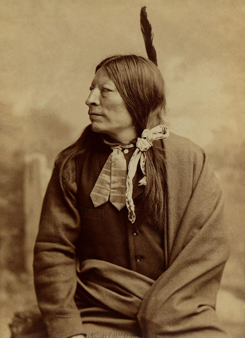 An old photograph of High Hawk - Sioux 1891 [A].