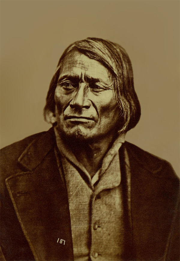 An old photograph of Long Mandan aka Ma-wa-tan-na-han-ska aka Ma-va-ta-na-han-ska - Two Kettle 1867 [A].