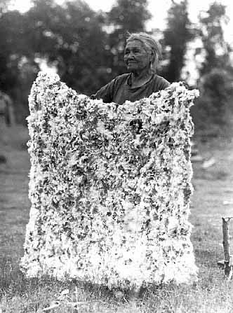 An old photograph of Mrs John Franks and Rabbit Robe - White Earth Reservation.