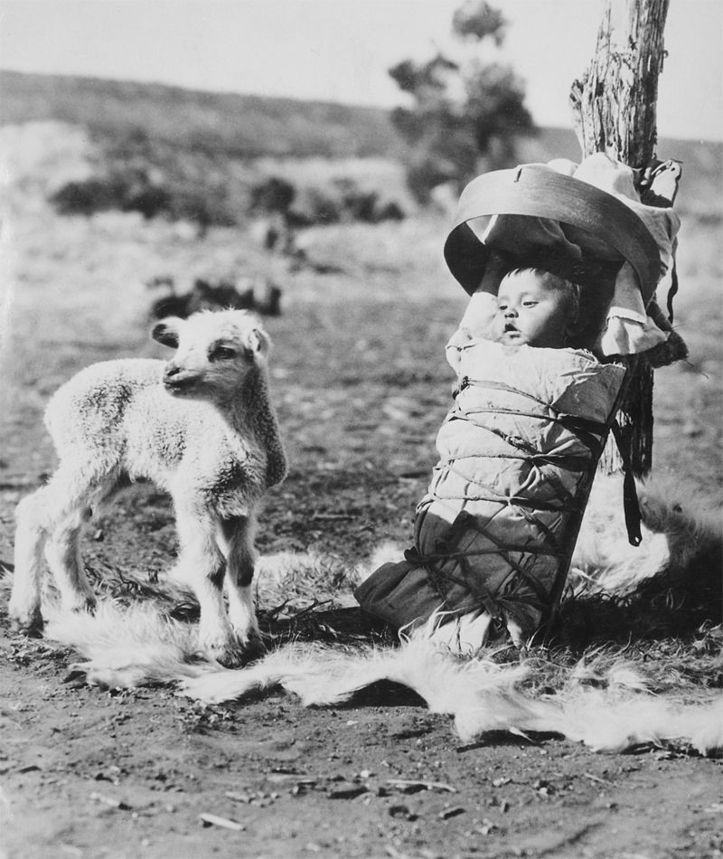 An old photograph of a Navajo Papoose on a Cradle-Board with a Lamb Approaching - Window Rock, Arizona.