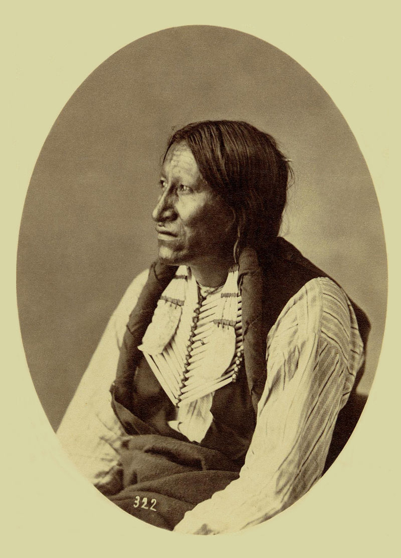 An old photograph of Poor Elk - Sioux 1872.