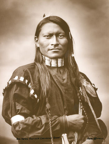 An old photograph of Red Sleeve - Northern Cheyenne 1879.