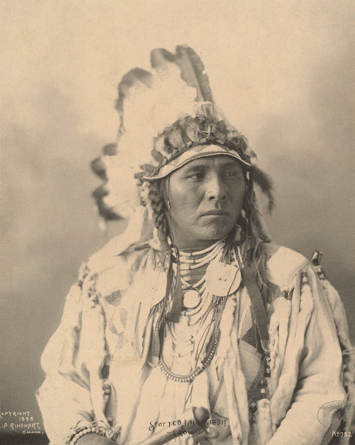 An old photograph of Spotted Jack Rabbit - Crow 1898 [A].