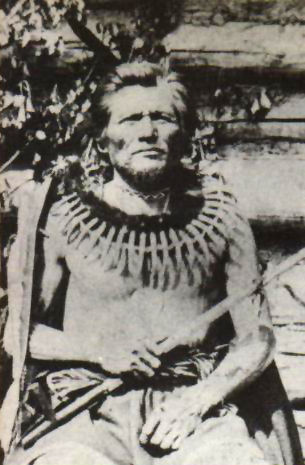 An old photograph of Standing Bear - Ponca c1870.