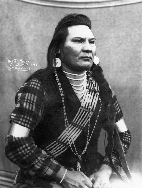 An old photograph of White Bull - Umatilla.