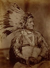 Big Rib aka Fought By The War Eagle, Oglala Chief.