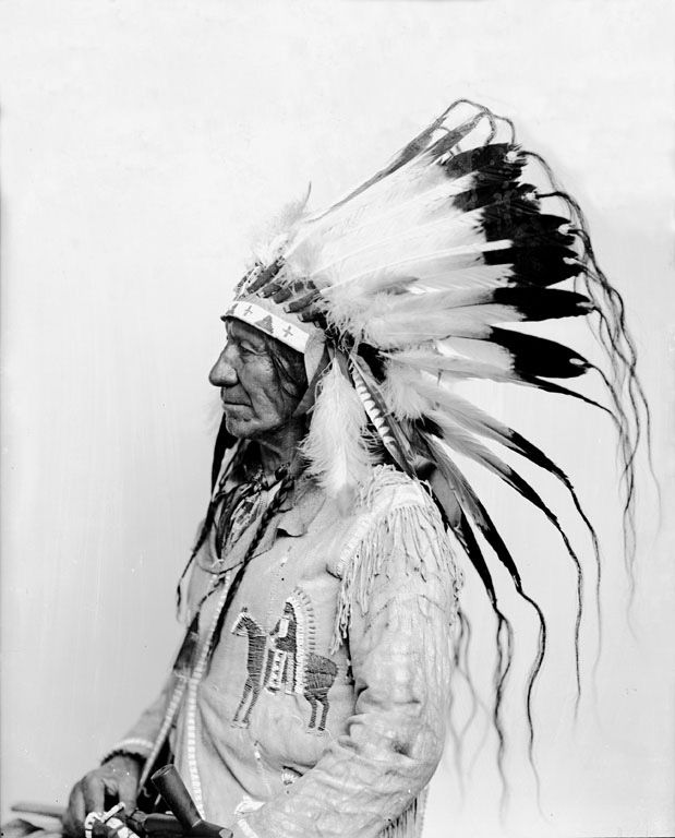American Indians : American Horse - Oglala 1880.