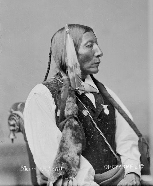 Big Horse, An American Indian of the Cheyenne Nation 1880.