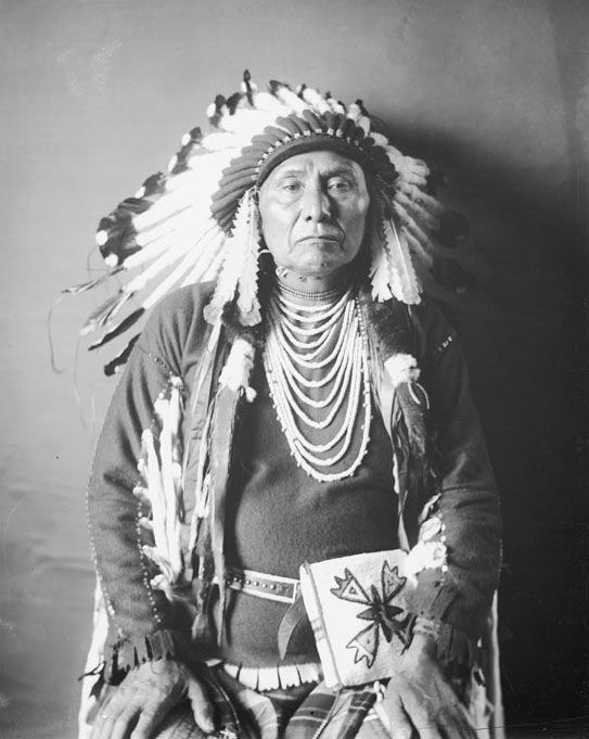 Chief Joseph, An American Indian of the Nez Perce Nation 1903 Photograph 2.