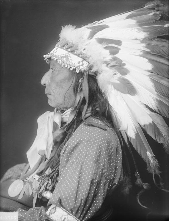 An American Indian called Eagle Horn of the Oglala Nation 1910.