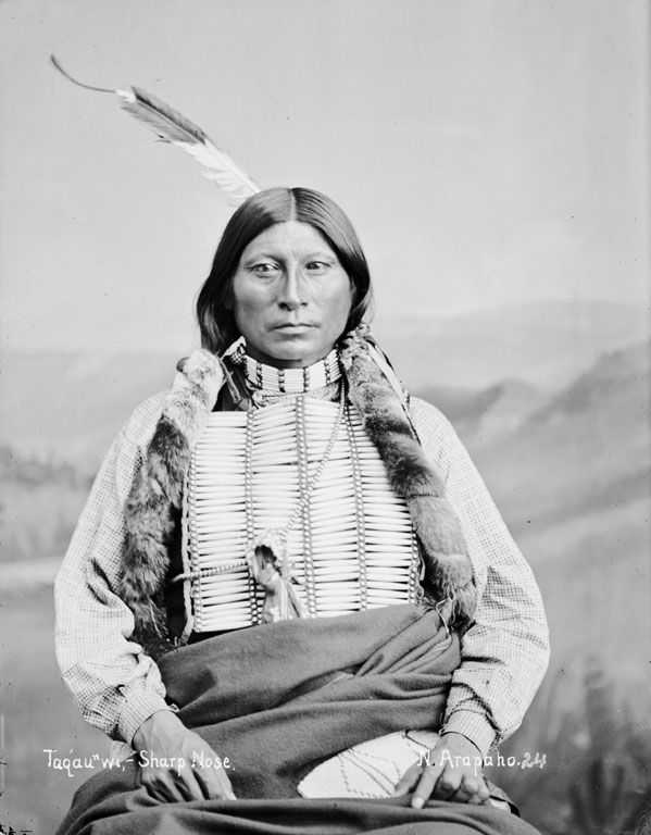 American Indians : Sharp Nose - Arapaho 1882.