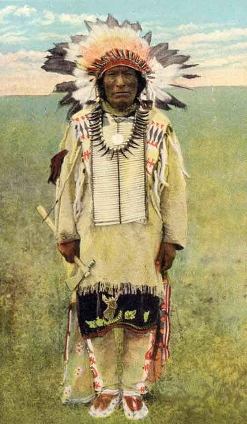 American Indians : Iron Hail [Dewey Beard].