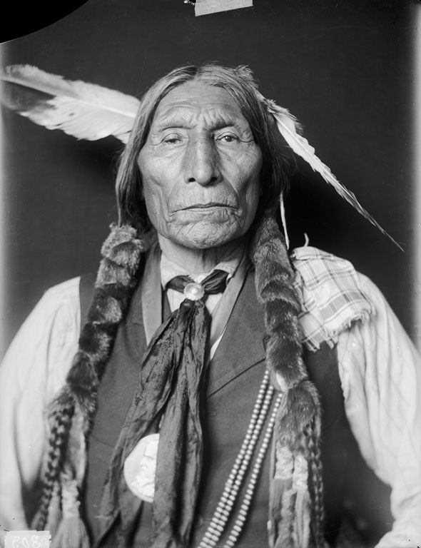indian chief and wolf - photo #18
