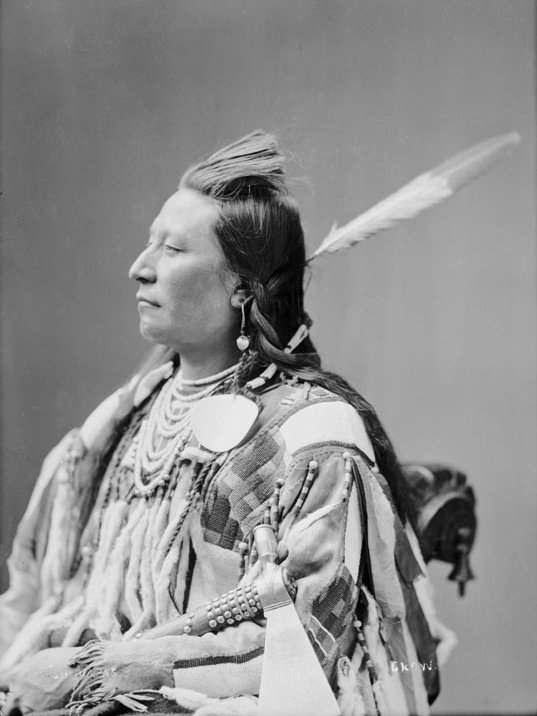 American Indians : Plenty Coups - Crow 1880.