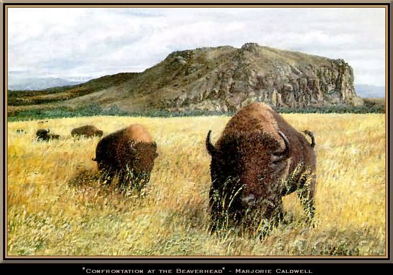 Marjorie D. Caldwell : Confrontation at The Beaverhead.