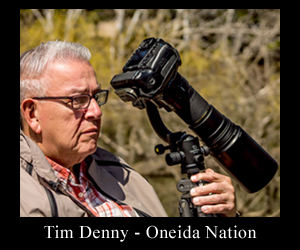 Tim Denny, Photographer.