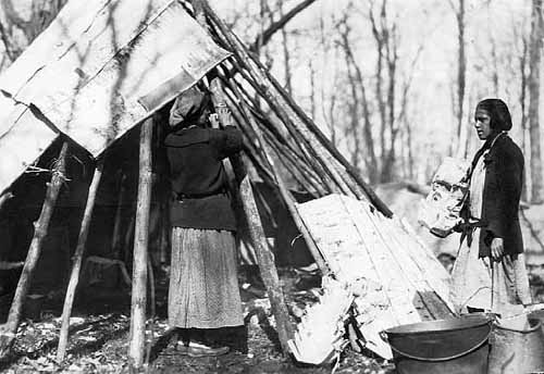 Building a Birch Bark Tepee at Maple Sugar Camp, Mille Lacs Reservation.