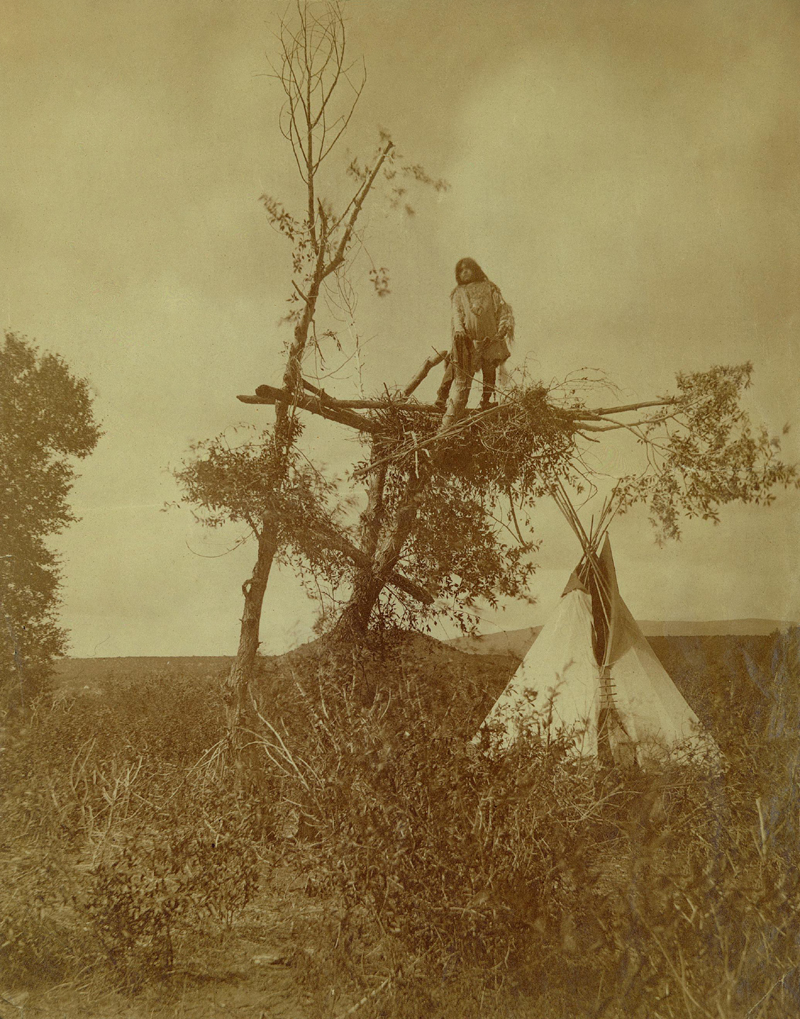 Ute Encampment and Tree Lookout - 1873.