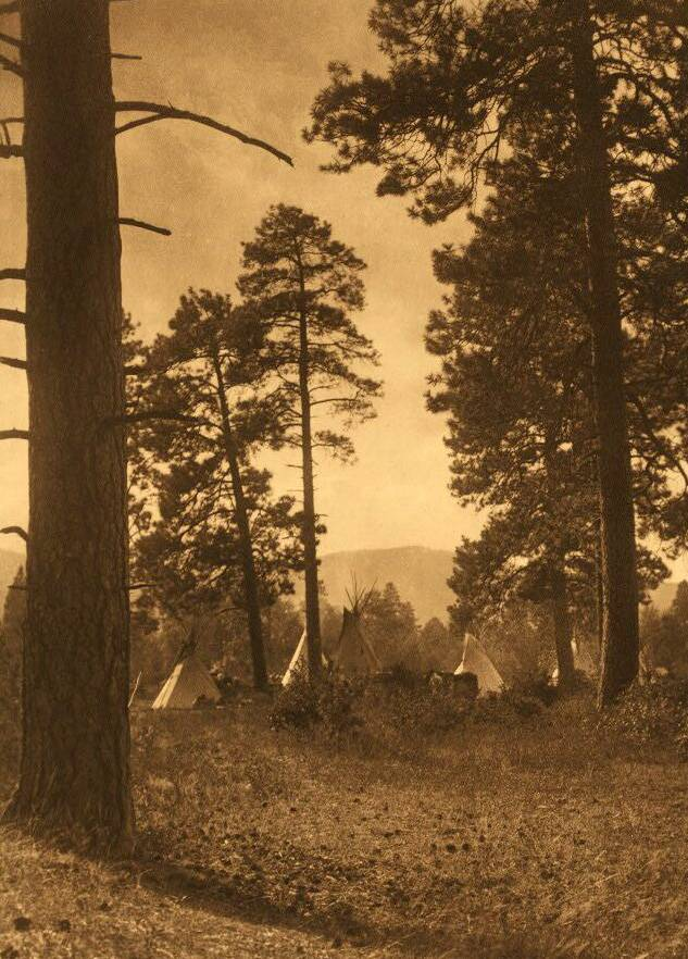 tipi (teepee or tepee) photograph : Flathead Camp.