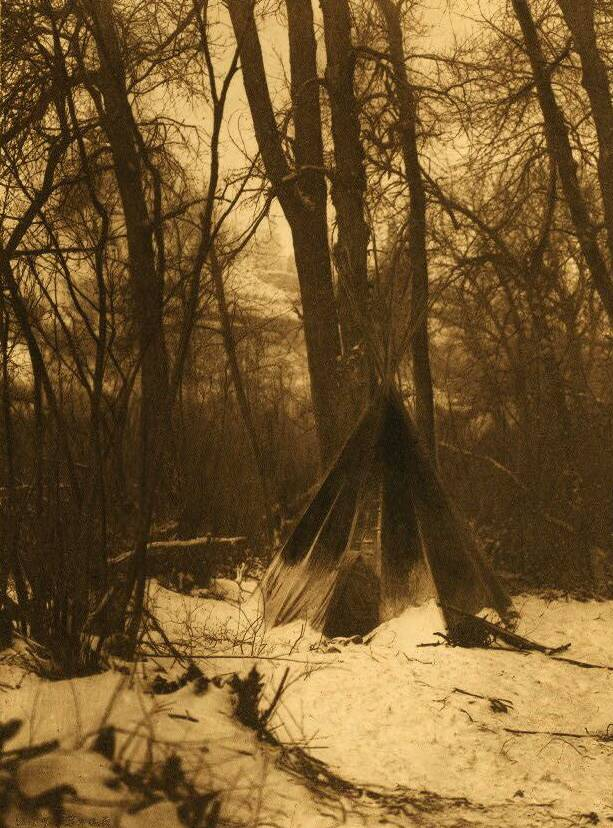 tipi (teepee or tepee) photograph : In the Forest.