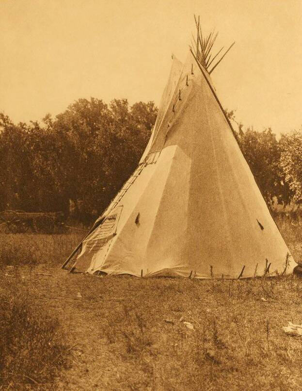 tipi (teepee or tepee) photograph : Preparatory Lodge Cheyenne Sun Dance.