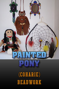 Native American Beadwork by Painted Pony.